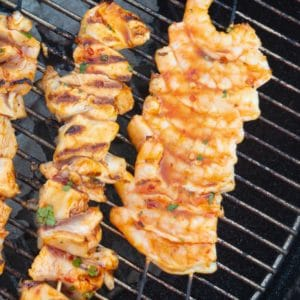 chicken and shrimp skewers